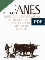 Sanchez Trujillano, Maria Teresa_Afanes 1991