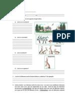Taller Estructura de Los Ecosistemas