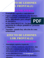 Sindromes Lobares.ppt
