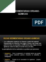 5. Rocas Sedimentarias Organo-quimicas (2)