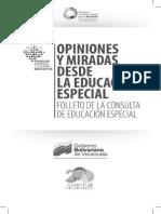 OPINIONES Y MIRADAS DESDE LA EDUCACIO¦üN ESPECIAL FOLLETO DE LA CONSULTA DE EDUCACIO¦üN ESPECIAL