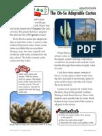 adaptations5-6 quick read cactus - mid