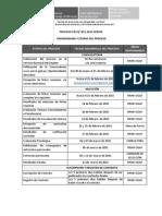 CAS 2015 015 Cronograma