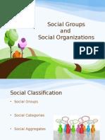 Social Groups and Organizations