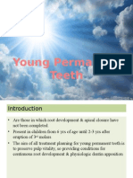 Young Permanent Teeth