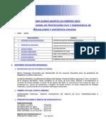 Informe Diario Onemi Magallanes 24.02.2015