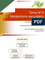 Metabolismo Secundario