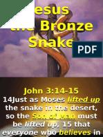 Bronze Snake