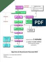 Algoritmo Guia 2010 Rcp Neonatal