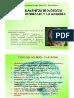 FUNDAMENTOS BIOLOGICOS DEL APRENDIZAJE Y LA MEMORIA.pdf
