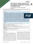 C/EBP Transcription Factors in Human Squamous Cell Carcinoma