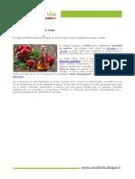 PDF Aceto Mele Fatto in Casa Doc