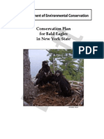 NYS Bald Eagle Conservation Plan