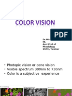 Physiology Color Vision