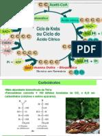 Aula Ciclo de Krebs Ou Ciclo Do Ácido Cítrico