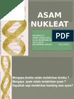 Asam Nukleat.ppt