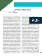 Dermatologia de faneras 2009