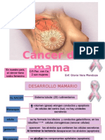 Cancer de Mama 2012