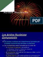 AcidosNucleicos_componentes