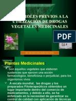 Controles Previos de Plantas Medicinales