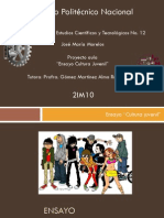 Proyecto aula Cultura juvenil.pdf