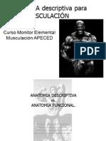 x 1-Anatomia Curso Monitor Elemental