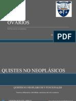 Patología de Ovarios