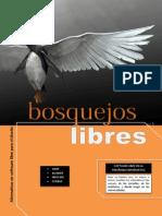 Revista bosquejos