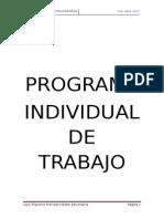 Programa Individual Trabajo Portafolio