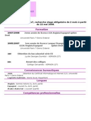 Cv En Francais Demande De Stage