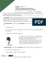Ficha de Trabalho 11 Porosidade e Permeabilidade Parte I