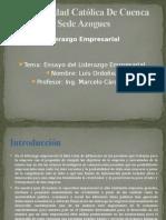 Liderazgo Empresarial y de innovacionDeber Ensayo