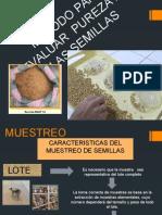 Metodo  para evaluar pureza  en semillas