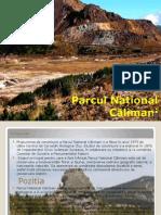 Proiect Parc National Muntii Calimani
