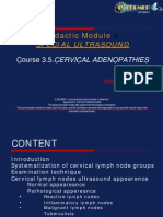 05 Cervical Adenopathies