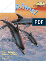 Dolphins! - Sharon Bokoske & Margaret Davidson & Courtney