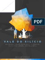 Vale Do Silicio - Reinaldo Normand