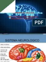 asistencia de enfermeria en padecimientos neurologicos