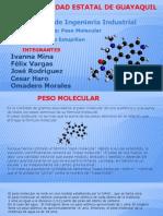 1.3 Peso Molecular