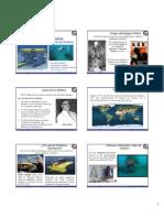 Robotica Submarina__Sistemas Aplicaciones y Tendencias de Actualidad