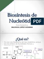 Biosíntesis de Nucleótidos.ppt