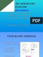 tiposdecontraccinmuscular-phpapp02