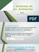 6.3.1.-Sistemas de Gestion Ambiental