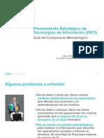 PETI Guia2014