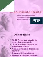 Crecimiento Dental
