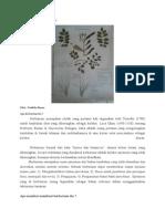 Cara Membuat Herbarium