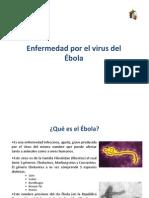 Ebola Fever