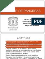 Cancer de Páncreas