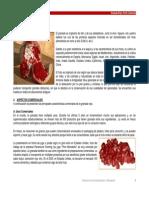 Granada Roja