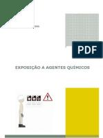 Guia Prático Exposição a Agentes Químicos